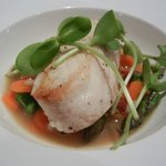  Wild Pacific Halibut - Recess