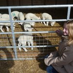 Emma with one week old lambs