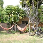  Hammocks and the garden