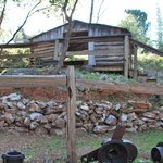 Miner's cabin at the ranch