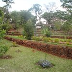 Terraced Garden