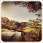 mkhuze game-drive with ghost mountain safaris