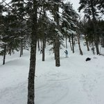 Brackett Basin Glade is steep and deep with powdah!