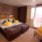  Double room in hotel Hullu Poro