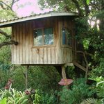 Tree house therapy room.
