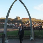 whale bones and abbey