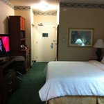 Foto de Hilton Garden Inn Houston / Bush Intercontinental Airport