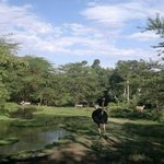  Mount Meru Game Lodge &amp; Sancturay