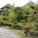The Baliem Valley Resort