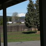 Mt Shasta from the porch