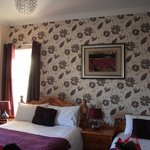  Our room was clean, comfortable and nicely decorated.