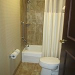Foto de SpringHill Suites by Marriott Tampa North / Tampa Palms
