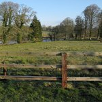  A paddock beside the hotel and river Shannon