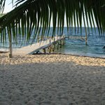 View of the beach and dock