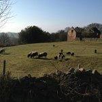 Foto van Rock House Farm Holiday Cottages