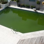  la piscine verte...