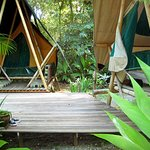  Tiki tents