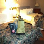 Travelodge Inn & Suites Albany Foto