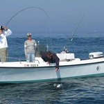 Block Island Fishing Charters