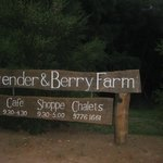 Φωτογραφία: Pemberton Lavender and Berry Farm