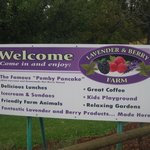 Pemberton Lavender and Berry Farmの写真