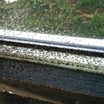 Swarms of bugs surrounding the hot tub.