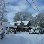 Cysgod y Coed B&amp;B and Self Catering Cottage