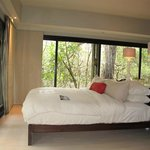  Glass walled bedroom