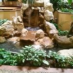 Waterfall  near dining area