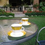  Masala chai on the lawn