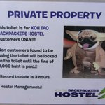 Фотография Koh Tao Backpackers Hostel