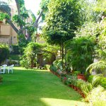  The glorious gardens at Sham Nath Villa