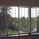 Huge window overlooking back garden