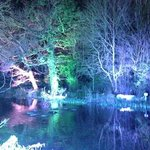 The mill pond at night.