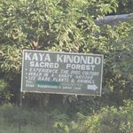  Kaya Kinondo