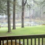 Cold Springs Resort and RV Park resmi