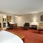 Foto van Hampton Inn Madison
