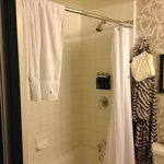 Bathroom shower with bowed rod