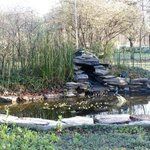 Small pond/water feature with bench.