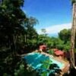 Mar y Selva Ecolodge