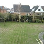  View of the back garden from room