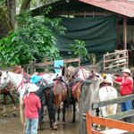  Preparando los caballos...