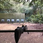 try the rifle shooting!!!!
