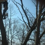  outside our room window, man and chain saw Sunday 8am