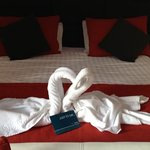  swan towels and card left on our bed as it was our honeymoon.