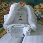 Room Maid Towel art