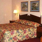  Swiss Village Inn Eureka Springs Room