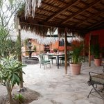  Iguana Inn Courtyard