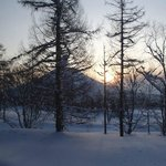 Foto de The Green Leaf Niseko Village