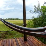 Hammock on our private deck